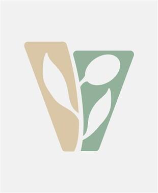 Chianti DOCG 2019 Vernaiolo